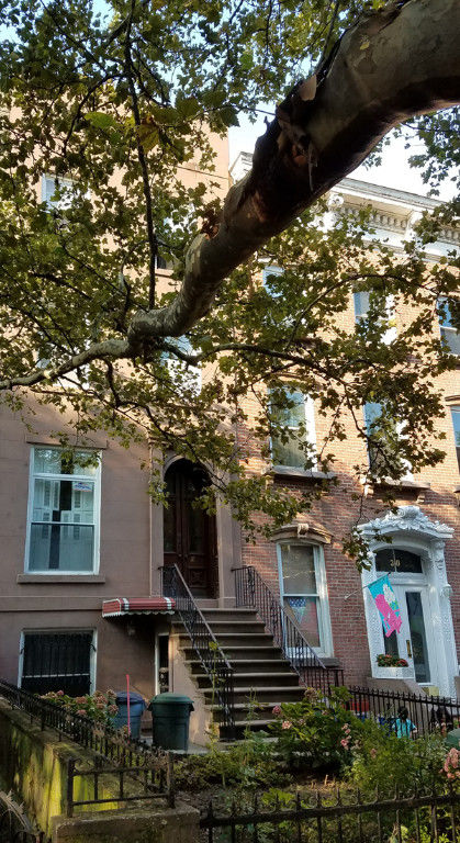 Come Home To One Of The Prettiest Blocks In Carroll Gardens Photo 7 - BBR-2767