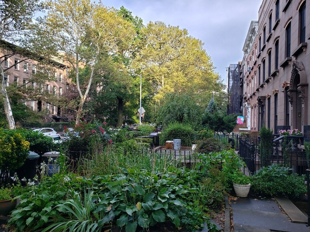 Come Home To One Of The Prettiest Blocks...  Brownstone Duplex Photo 16 - BBR-2798